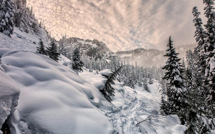 Scarica sfondi inverno neve montagne foresta montagna for Sfondi desktop inverno montagna