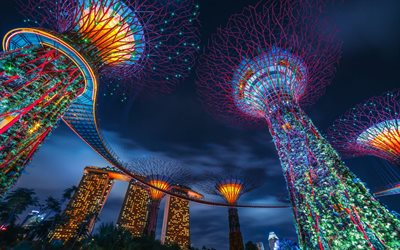 Singapore, Supertree Grove, Marina Bay Sands, evening, sunset, creative trees, Gardens by the Bay, Marina Gardens