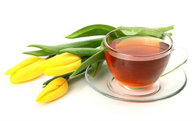 cup of tea, yellow tulips, spring flowers, flower tea, tulips on a white background, tea on a white background, yellow flowers
