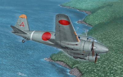 Tachikawa Ki-54, IJAAF, japanese combat trainer, Imperial Japanese Army Air Force, World War II, painted planes