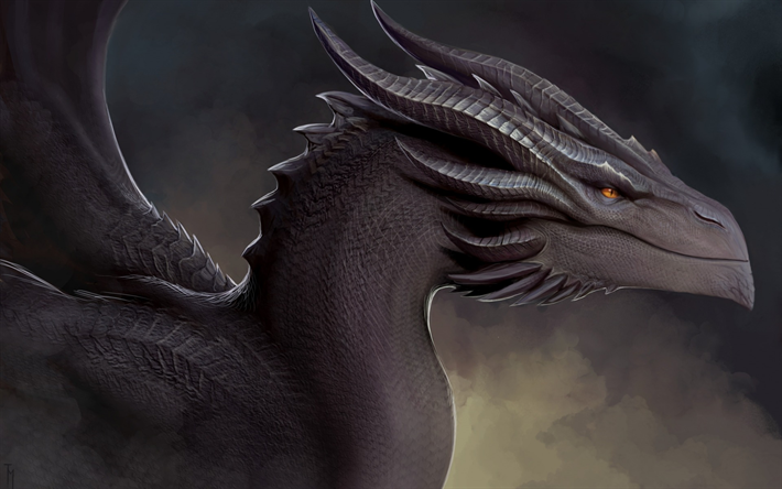 painted black dragon, art, fantasy dragon, fairy characters