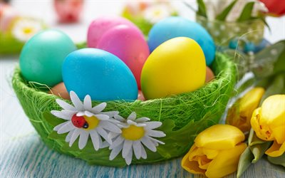 Easter eggs, basket, daisies, spring flowers, Easter, spring, Easter background