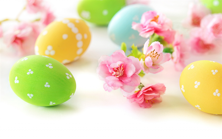 Easter, spring flowers, Easter eggs, white background, painted eggs