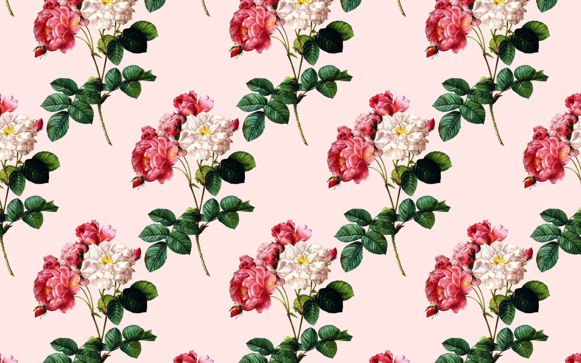 vintage texture with roses, pink background with roses, flower texture, roses, retro texture