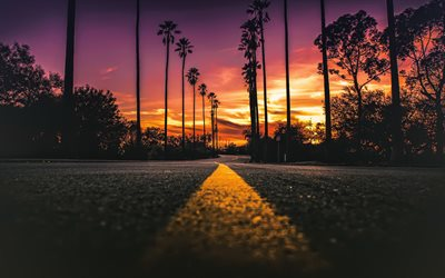 California, evening, sunset, palm trees, yellow line on the asphalt road, USA, beautiful sunset in California