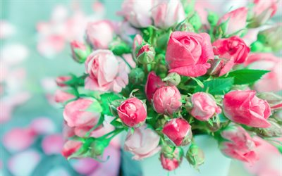 pink roses bouquet, 4k, bokeh, bouquet of roses, pink flowers, roses, buds