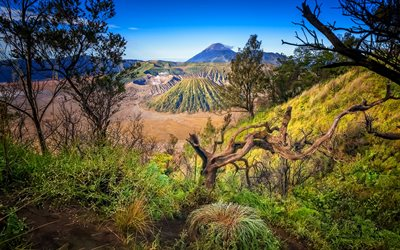 Mount Bromo, HDR, volcano, beautiful nature, Indonesia, Asia