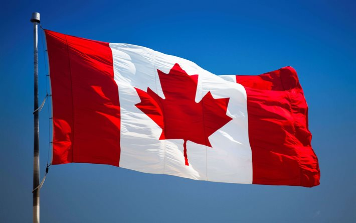 Flag of Canada on a flagpole, Canadian flag, blue sky, Canada, North America, Flag of Canada