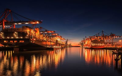 MSC Rifaya, container ships, Cap San Nicolas, evening, seaport, delivery of containers, port cranes, delivery concepts