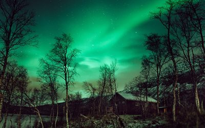 aurora borealis, north, winter, night, night sky