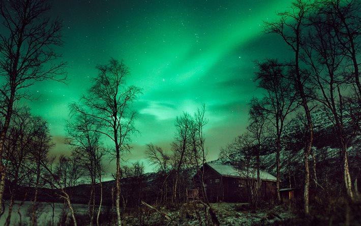 Scarica sfondi aurora boreale nord l 39 inverno la notte for Sfondi desktop aurora boreale