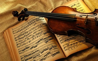 violin, musical notes, musical instruments