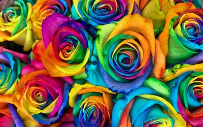 colorful roses bouquet, 4k, rainbow, bouquet of roses, bokeh, colorful flowers, roses, buds, colorful roses, beautiful flowers, backgrounds with flowers, colorful backgrounds