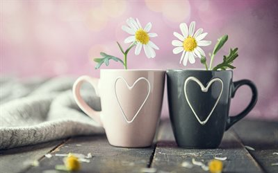 a couple of cups, chamomile, romance, love concepts, cups with hearts, cups with flowers