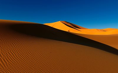 desert, sand dune, sand waves, Africa, sunset, evening, dunes