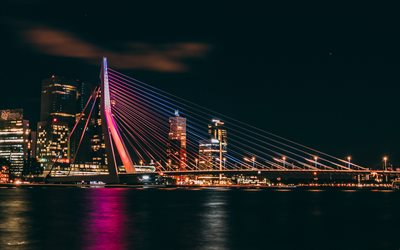 Erasmus Bridge, Rotterdam, Meuse River, night, Rotterdam cityscape, beautiful bridge, Netherlands