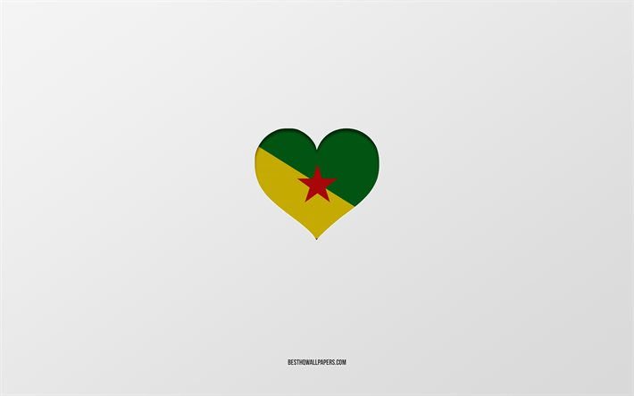 I Love French Guiana, North America countries, French Guiana, gray background, French Guiana flag heart, favorite country, Love French Guiana