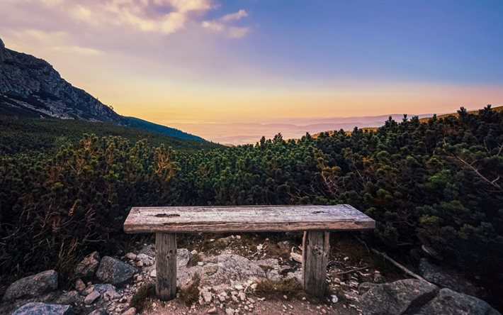 wooden bench in the mountains, forest, mountain landscape, sunset, mountains