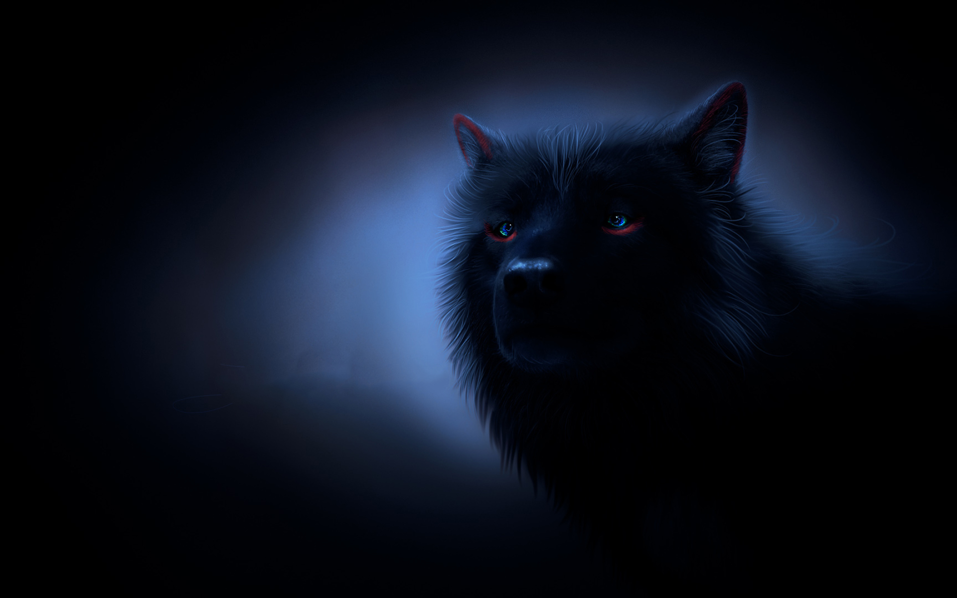 black wolf, darkness, wolf with blue eyes, fog, wildlife, fantastic wolf
