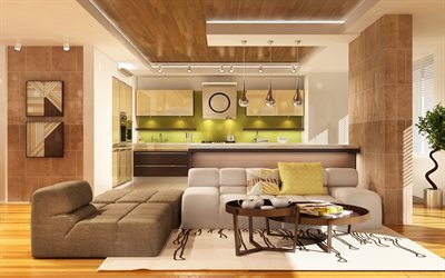 stylish modern interior, kitchen, living room, minimalism, modern design