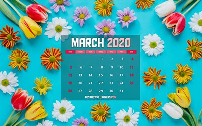 March 2020 Calendar, spring flowers, 2020 calendar, 4k, paper card, spring calendars, March 2020, creative, blue backgrounds, March 2020 calendar with flowers, Calendar March 2020, artwork, 2020 calendars