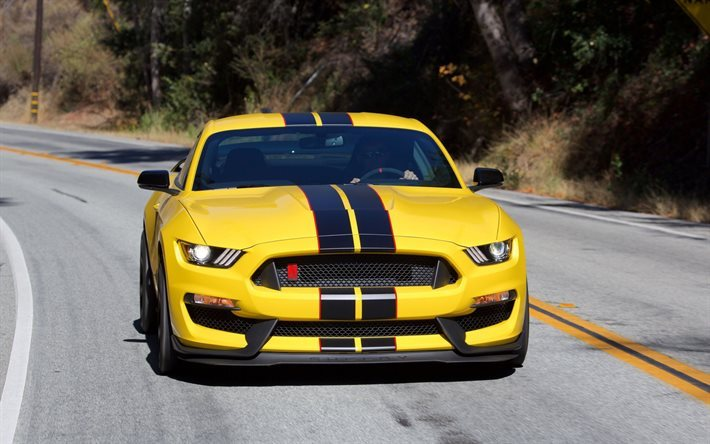 Ford Mustang, Shelby GT350, yellow Mustang, American cars, sports cars, Ford