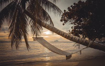 Hammock on the palms, tropical islands, sunset, evening, seascape, luxury yachts, palm trees, Hammock, Maldives
