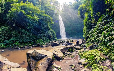 waterfall, jungle, river, beautiful waterfall, Bali, Indonesia