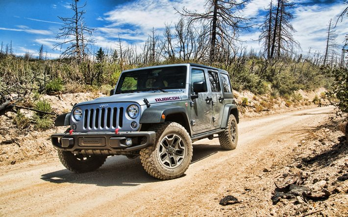 Jeep Wrangler Rubicon, forest, offroad, 2020 cars, SUVs, 2020 Jeep Wrangler, american cars, Jeep
