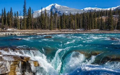 waterfall, mountain river, mountain landscape, forest, Athabasca Falls, Alberta, Jasper National Park, Canada