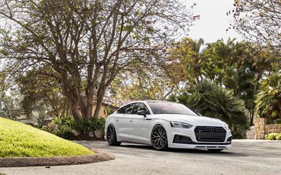 TAG Motorsports, tuning, Audi S5, 2018 cars, Vossen Wheels, HF-2, german cars, white s5, Audi