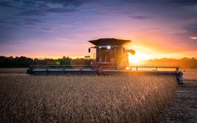 Fendt Ideal, 4k, wheat harvesting, 2020 combines, combine, sunset, combine-harvester, agricultural machinery, Fendt