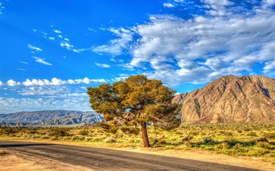 Mountains, summer, Anza-Borrego, State Park, HDR, California, USA