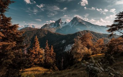Mountains, sunset, forest, autumn, mountain landscape, Bavaria, Germany, Watzmann