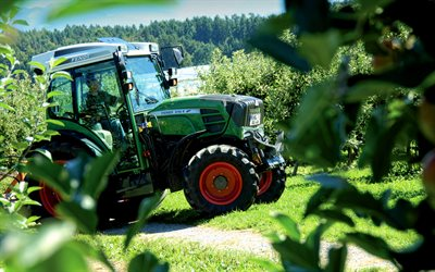 Fendt 210 VFP Vario, apple garden, 2020 tractors, HDR, agricultural machinery, tractor in the garden, agriculture, Fendt