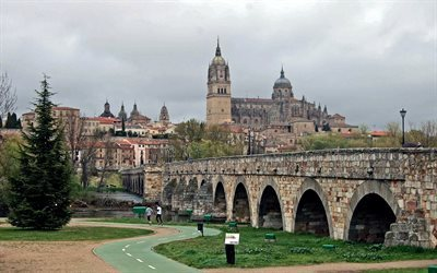 Salamanca, Spain, Roman bridge, River Tormes, Salamanca Cathedral