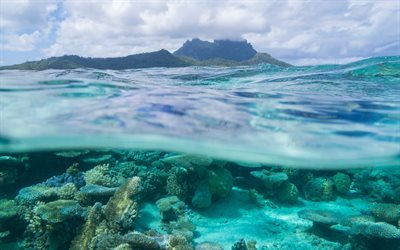 Bora Bora, coral, tropical island, ocean, underwater, wave, French Polynesia, Leeward Islands