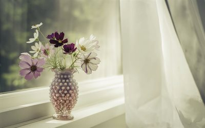 vase with flowers on the window, wildflowers bouquet, beautiful flowers, window