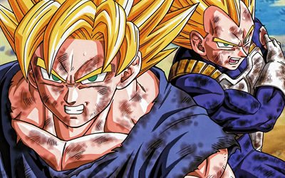 Vegeta, Dragon Ball Z, The Father of Goku, main character, japanese manga