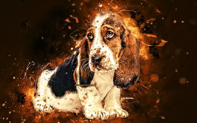 Basset Hound, puppy, brown neon lights, creative, cute animals, pets, Basset Hound dog, funny art, dogs