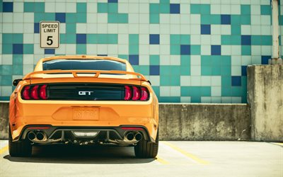 Ford Mustang GT, 2018, Fastback Sports, rear view, sports coupe, yellow Mustang, american cars, Ford