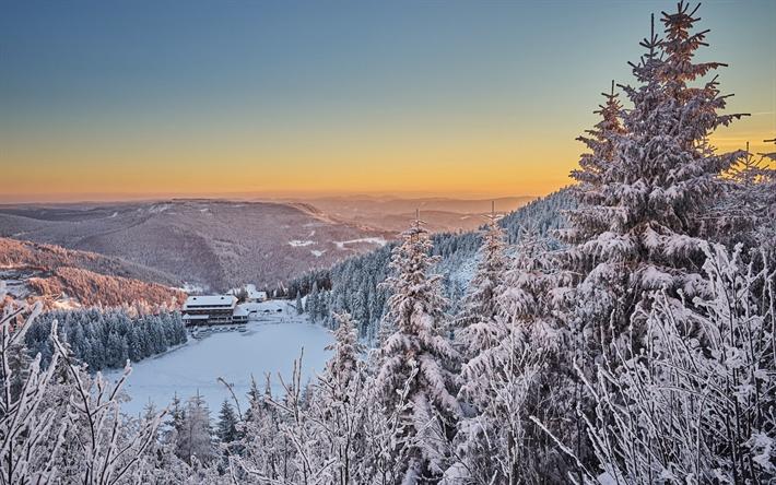 scarica sfondi inverno paesaggio montagne foresta neve