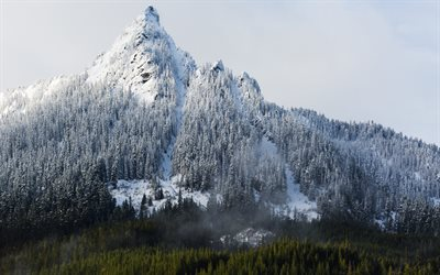 winter, mountain, rocks, winter landscape, snow, forest, USA, Washington, United States