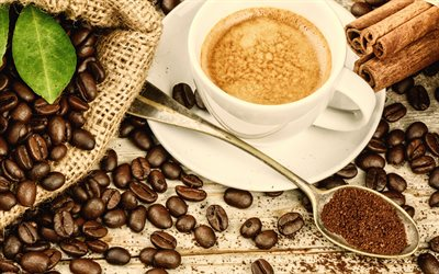 cappuccino, coffee concepts, coffee beans, cinnamon sticks, coffee cup