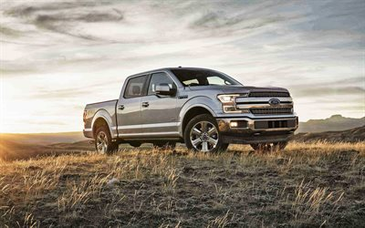 2019, Ford F-150, side view, exterior, new silver F-150, american cars, Ford