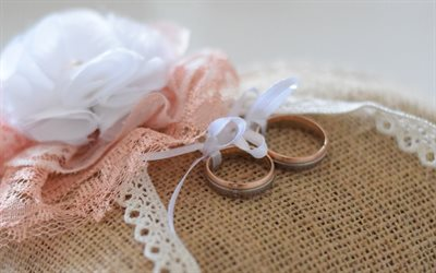 wedding rings, gold rings, white silk bow, white rose, wedding concepts