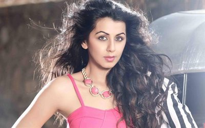 Nikki Galrani, Bollywood, indian actress, brunette, beauty