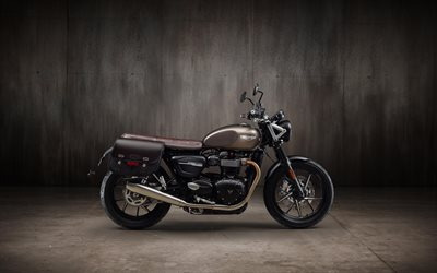 Triumph Speed Twin, 4k, classic roadster, 2019 bikes, superbikes, 2019 Triumph Speed Twin, british motorcycles, Triumph