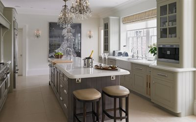 luxurious kitchen interior, classic style, modern kitchen design, English kitchen style, gray kitchen