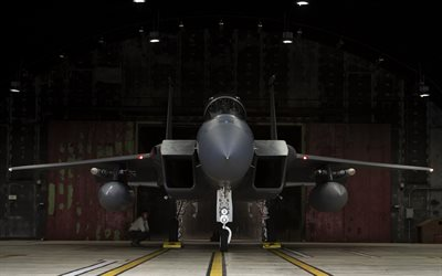 McDonnell Douglas F-15E Strike Eagle, American fighter-bomber, United States Air Force, F-15, American combat aircraft